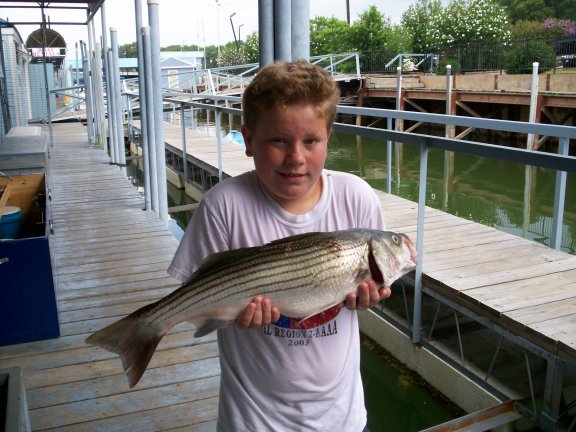 Marc Thompson's Lake Texoma Striper Fishing Guide Service, laketexomafishing.com